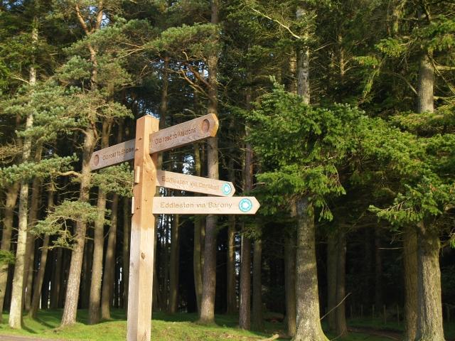 Signpost, Ada Hill.