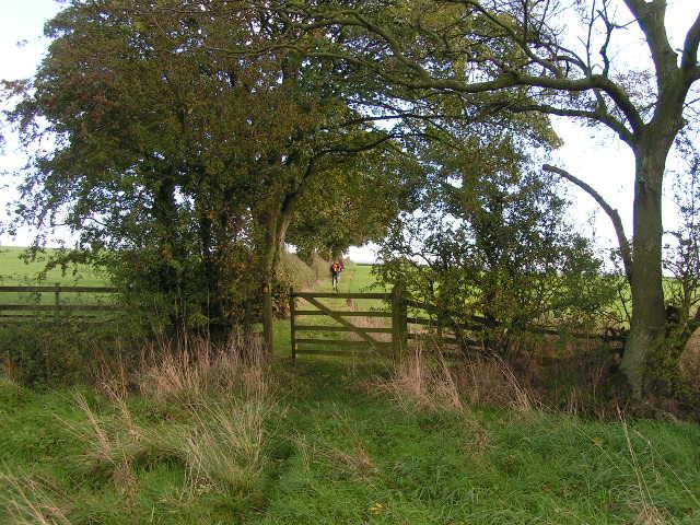 Farmland near Stanhowe