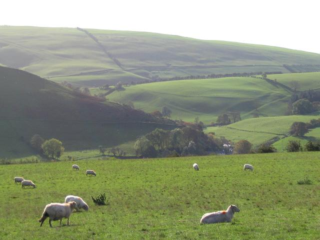 View from Pen-y-bryn