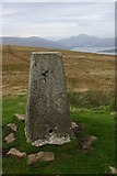 NS3680 : Bromley Muir trig with Ben Lomond in background by Iain Macaulay