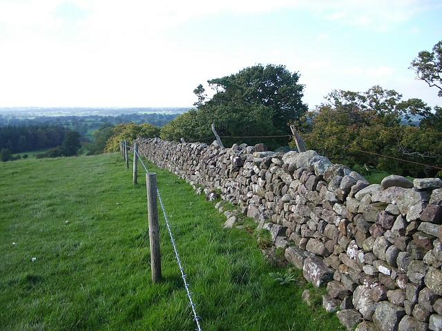 Drystone wall descending Craggle Hill