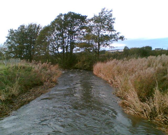 River Ellen near Harriston