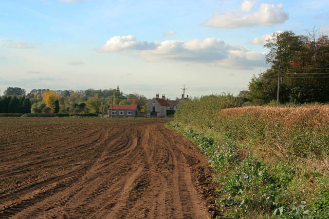 Farmland at Carlton Scroop
