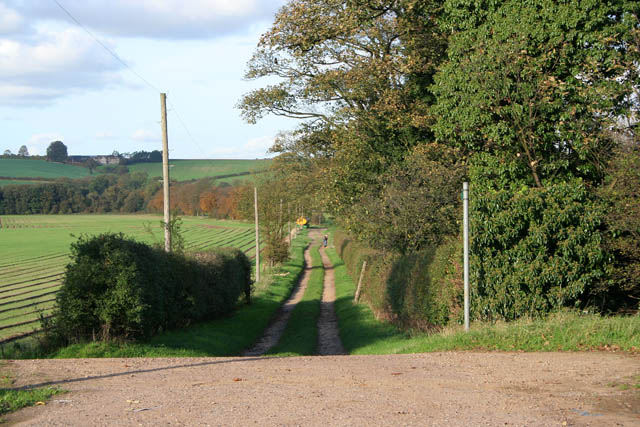 Farm track at West Willoughby
