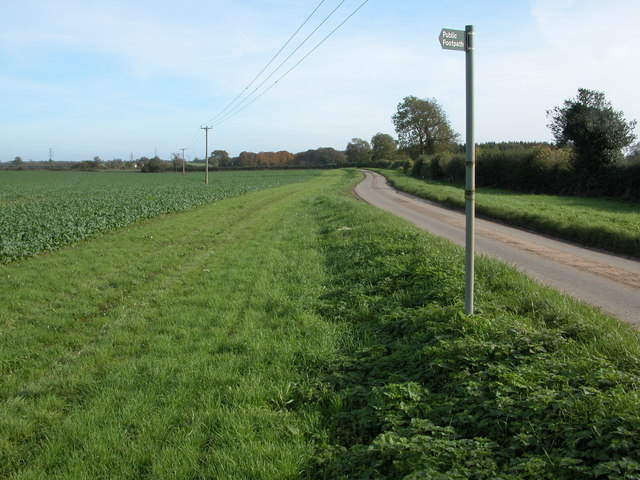 Road to Chavenage Green