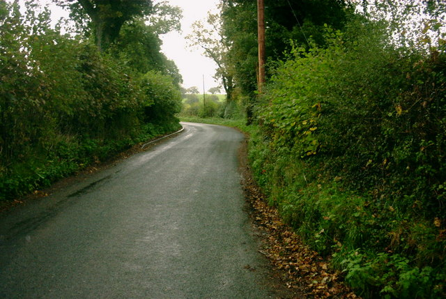 A Country Lane, Milwich