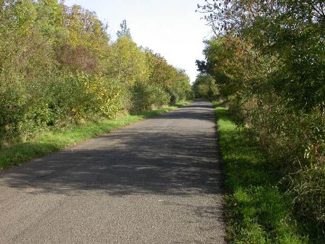 Yelnow Lane