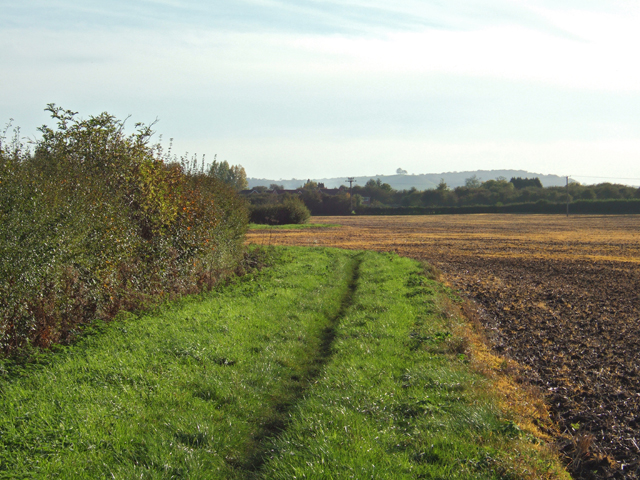 Bridleway, beside the worked field.
