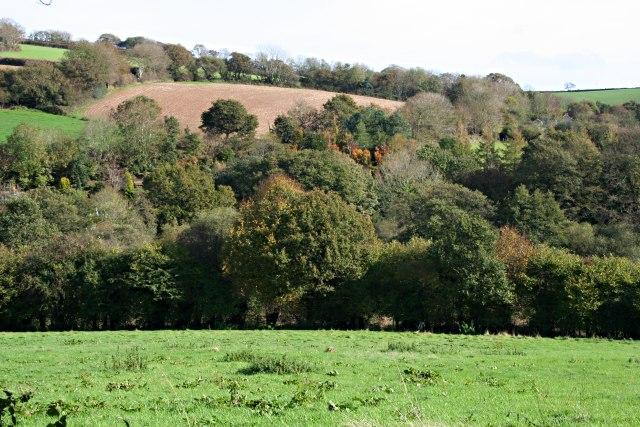 Woodland and Farmland