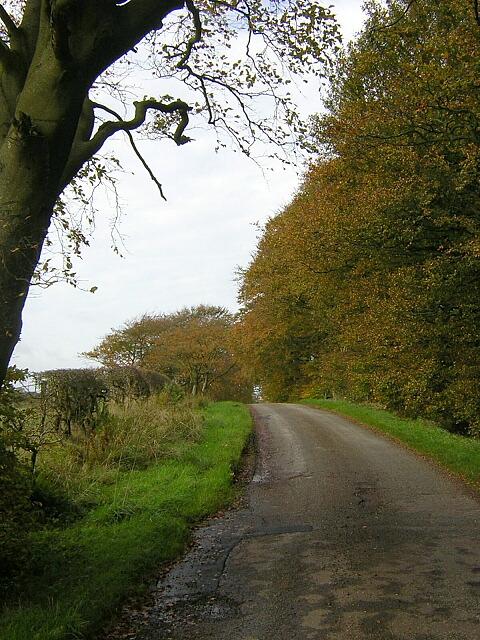 Langlands Road