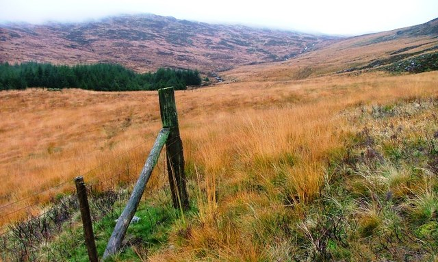 Fence, Near the Torrs of Kirriereoch