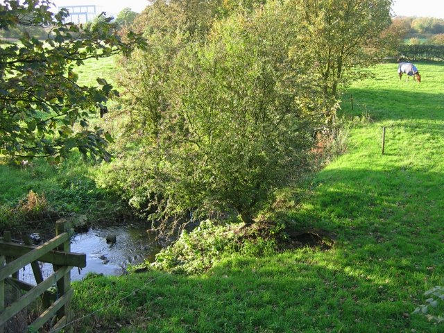 River Rother near Danesmoor