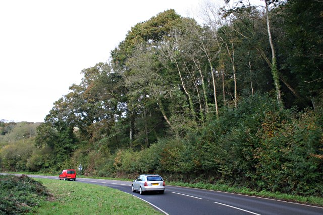 Main Road through the Looe Valley