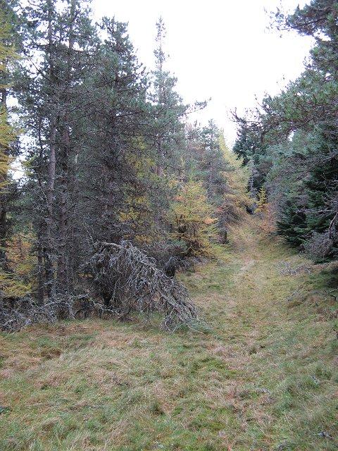 Ride, Hill of Greenstile