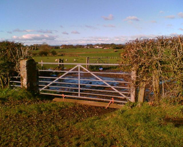 Farmland near Newbiggin