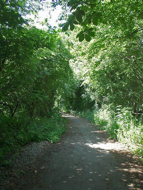 Stenner Lane, Didsbury