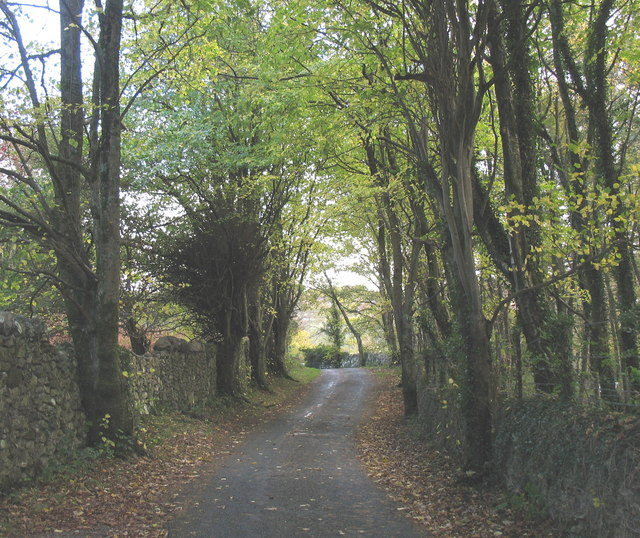 Approaching the top of Bryn Bras Hill
