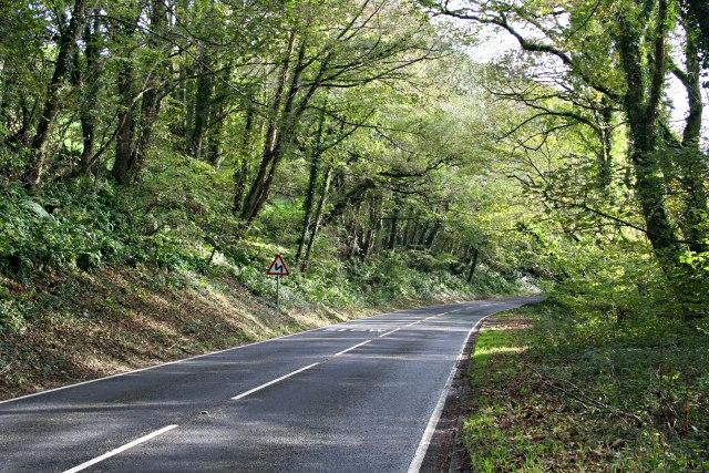Main Road along the Looe Valley
