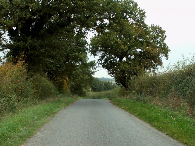 The road on Maple Hill