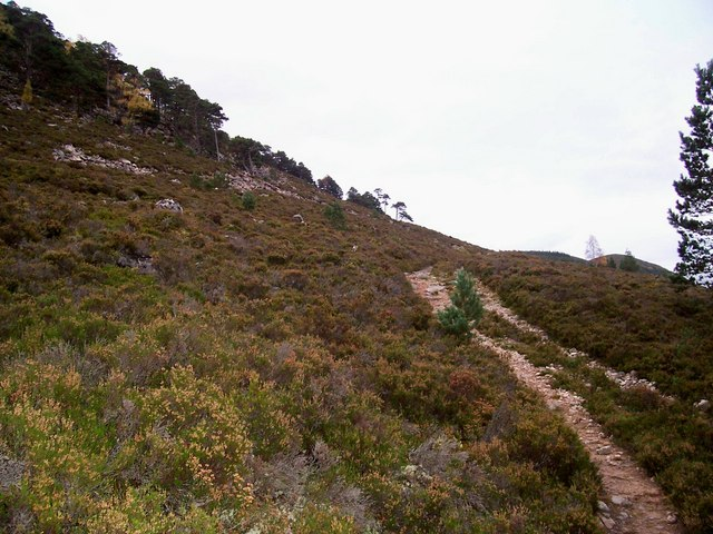 Track on west side of Cairn Creag Ghiuthsachan