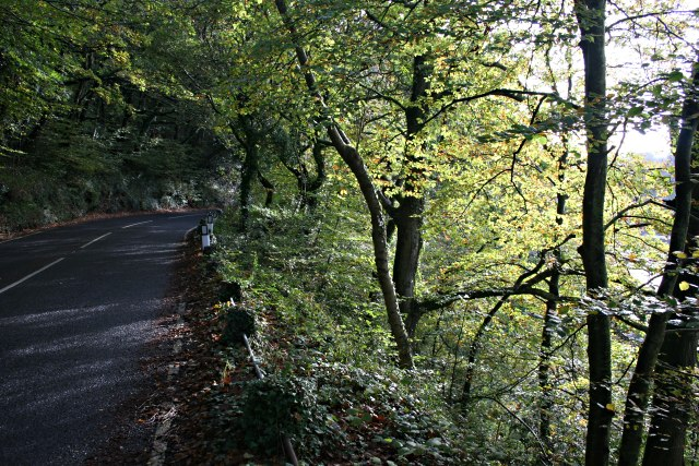 The Road to Looe