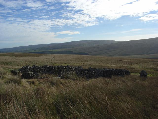Sheepfold above Burn Hope