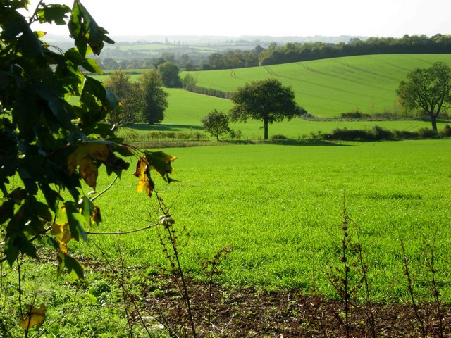 Farmland north east of Brockhall