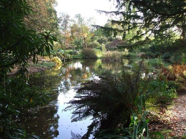 Torosay Castle, Water Garden