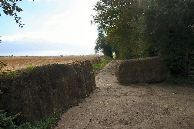 Bridleway at Freckenham