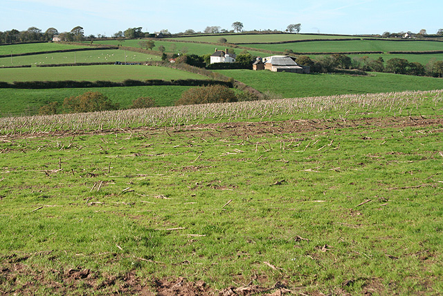 Witheridge: towards Wilson
