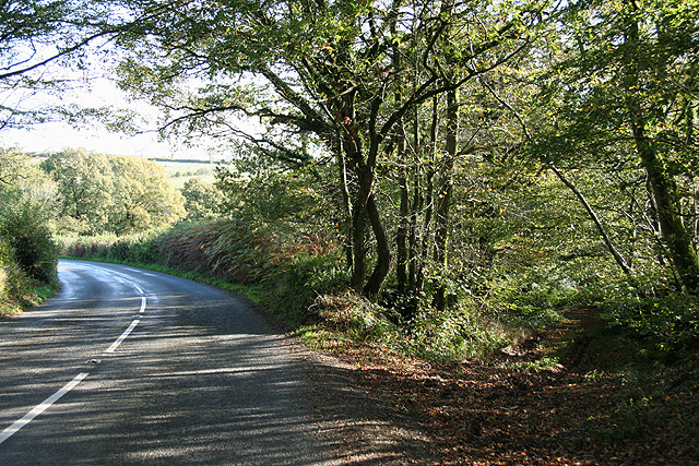 East Worlington: the old road to Witheridge