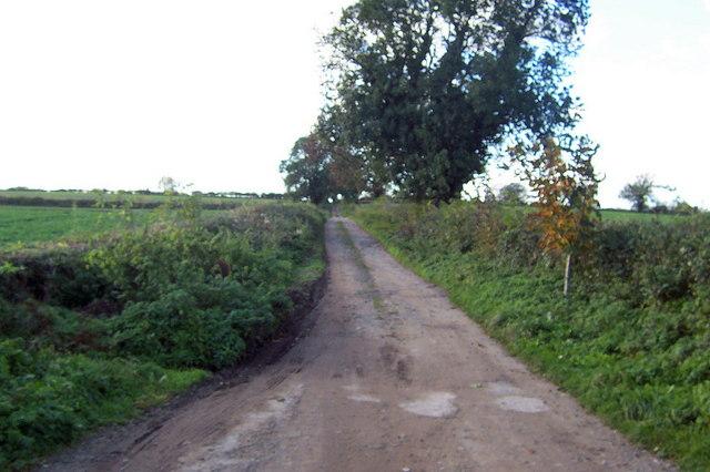 Ings Lane (West)