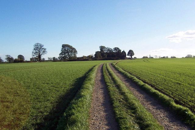 Track heading for Burton Leonard