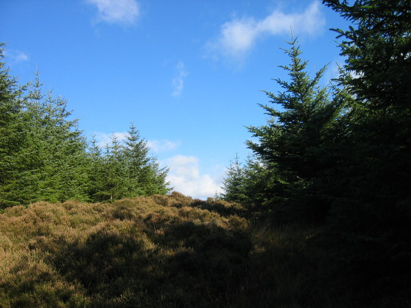 Footpath near Fellhouse Grags
