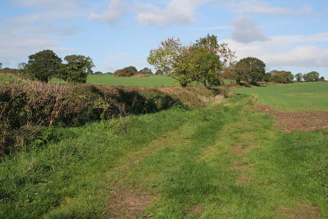 Farmland off Anstey Lane