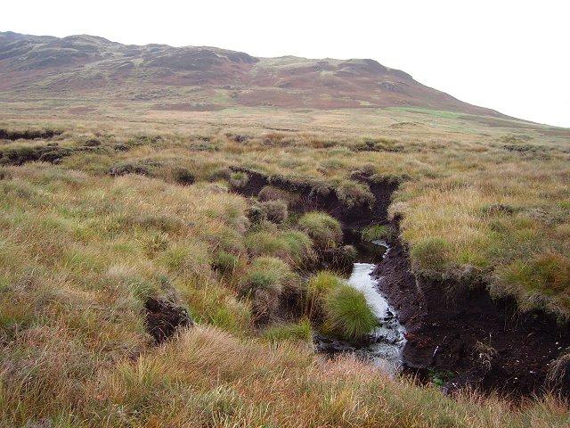Bog beside the Allt Ghas
