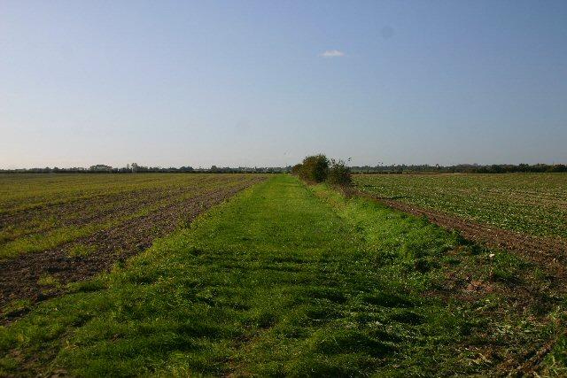 Track to Chalk Farm, Isleham