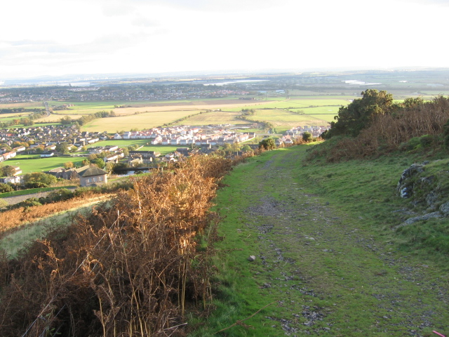 Lossburn track above Menstrie