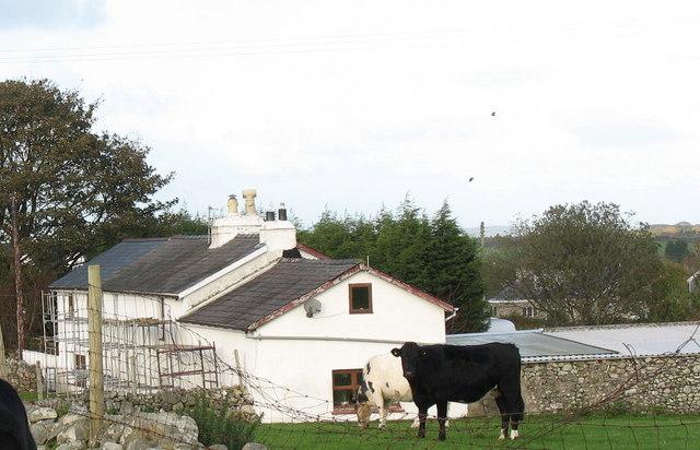 Bryneryr Cottage