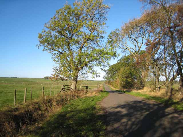 The road to Thockrington