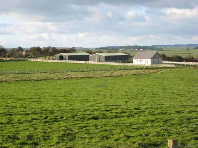 New barns near Boghall.