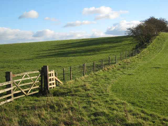 Fence near Belsay