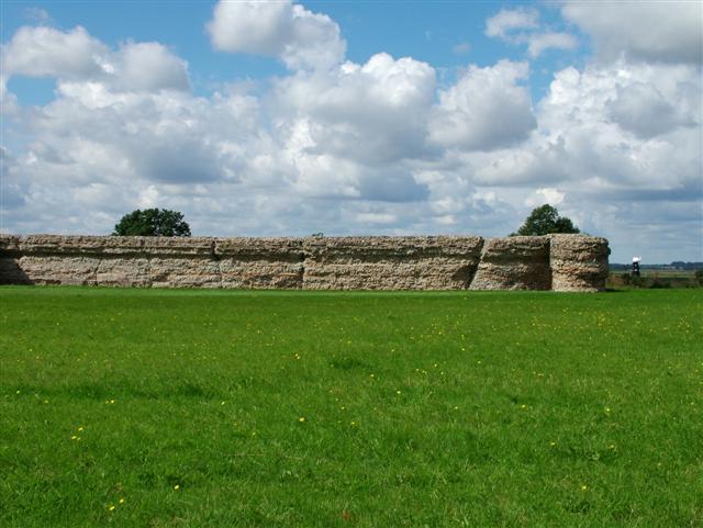 Roman Fort , Burgh Castle