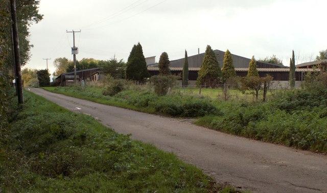 Norman's Grove