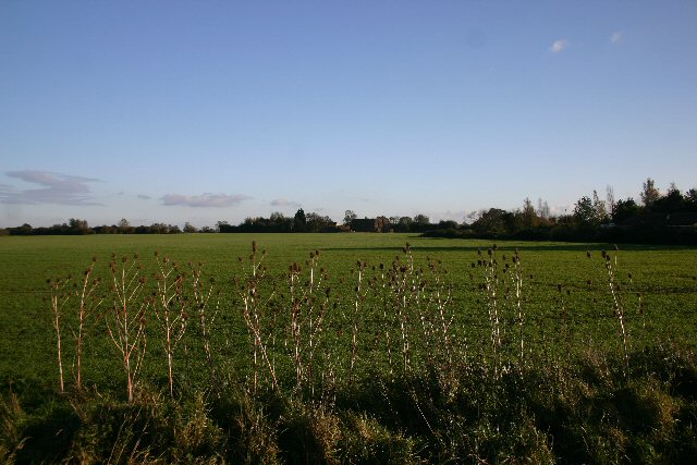 Fields at Chittering