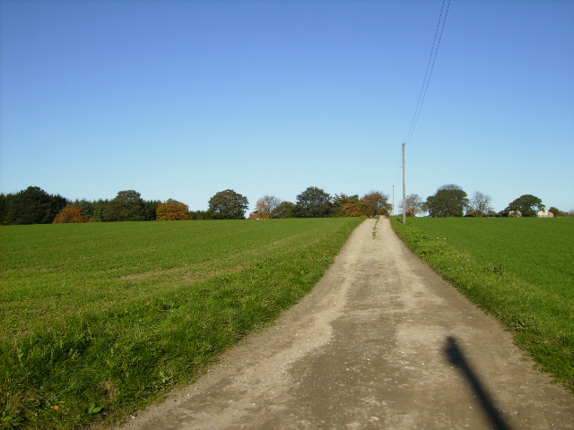 Track to Haverwitz Farm near Easingwold