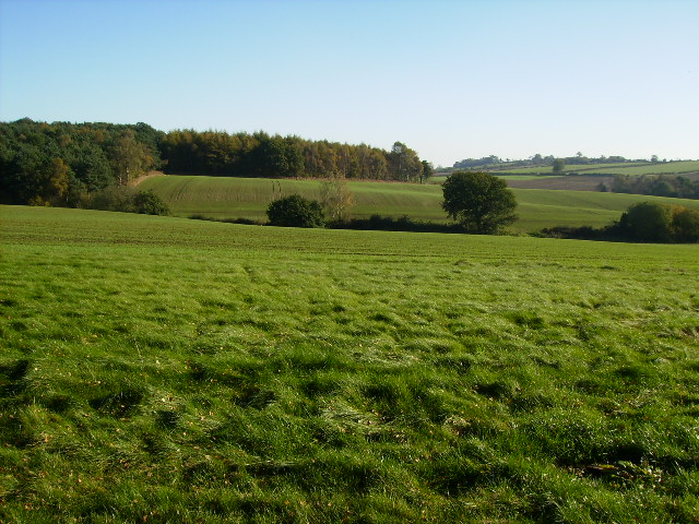 View across Scackleton Low Moor