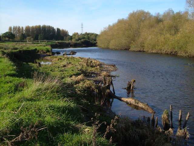 Bank erosion on River Exe