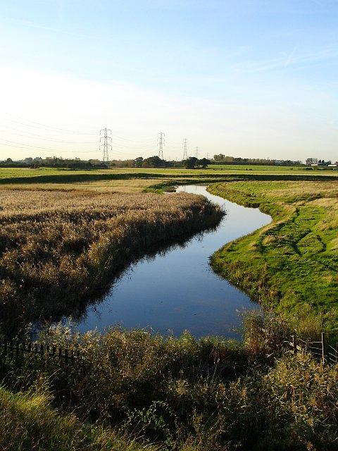 Drainage dyke near Conyer Creek