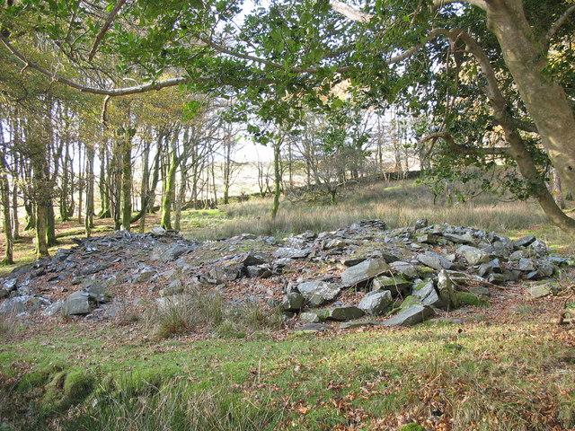 Leaf strewn remains of Plas Uwch Llyn